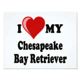 I Love (Heart) My Chesapeake Bay Retriever Dog Card