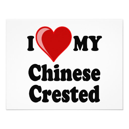I Love (Heart) My Chinese Crested Dog Personalized Invitation