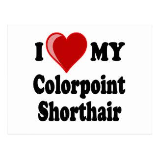 I Love (Heart) My Colorpoint Shorthair Cat Postcard