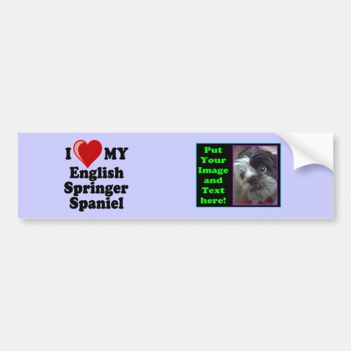 I Love (Heart) My English Springer Spaniel Dog Bumper Sticker
