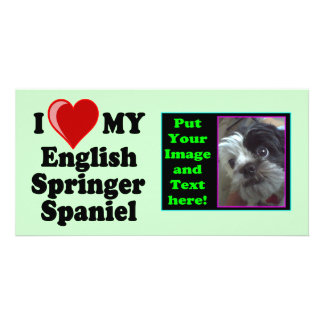 I Love (Heart) My English Springer Spaniel Dog Picture Card