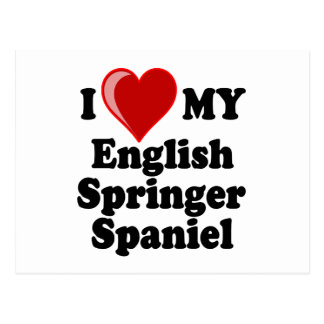 I Love (Heart) My English Springer Spaniel Dog Postcard