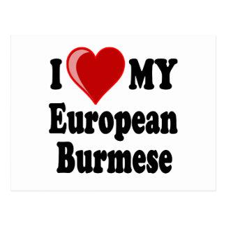 I Love (Heart) My European Burmese Cat Postcard