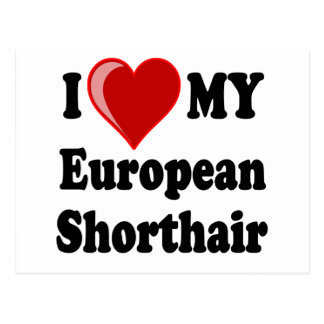 I Love (Heart) My European Shorthair Cat Postcard