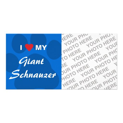 I Love (Heart) My Giant Schnauzer Photo Card