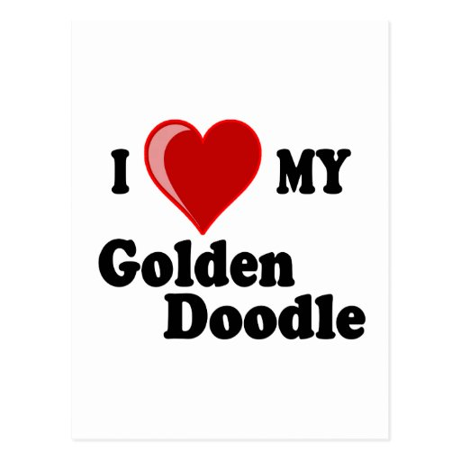 I Love (Heart) My Golden Doodle Dog Post Card Postcard