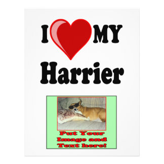 I Love (Heart) My Harrier Dog Personalized Flyer
