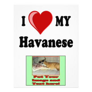 I Love (Heart) My Havanese Dog Flyer