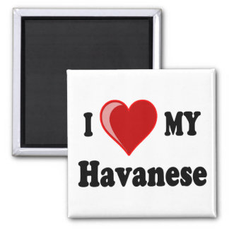 I Love (Heart) My Havanese Dog 2 Inch Square Magnet