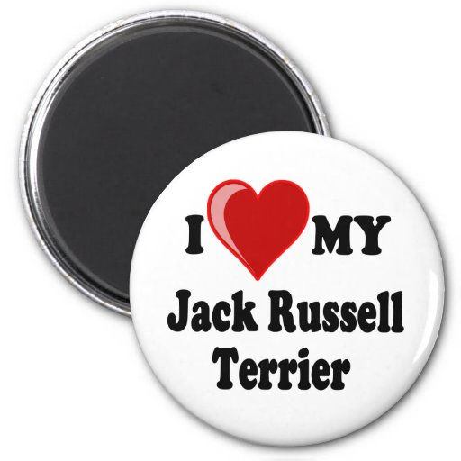 I Love (Heart) My Jack Russell Terrier Dog 2 Inch Round Magnet