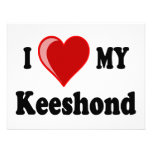 I Love (Heart) My Keeshond Dog Announcement