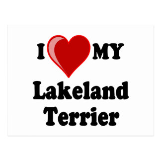 I Love (Heart) My Lakeland Terrier Dog Postcard