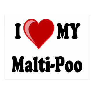 I Love (Heart) My Malti-Poo Dog Postcard