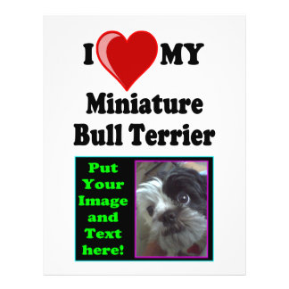I Love (Heart) My Miniature Bull Terrier Dog Flyer