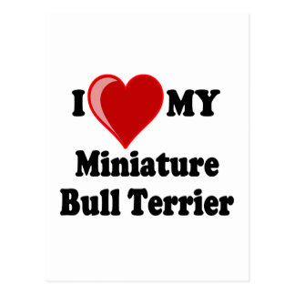 I Love (Heart) My Miniature Bull Terrier Dog Postcard