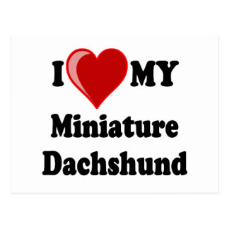 I Love (Heart) My Miniature Dachshund Dog Postcard