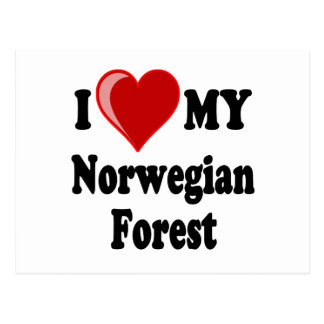 I Love (Heart) My Norwegian Forest Cat Postcard