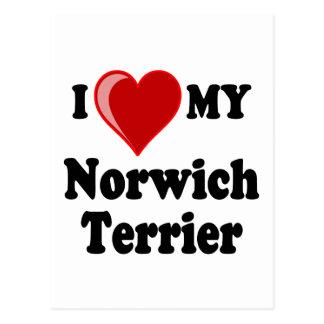 I Love (Heart) My Norwich Terrier Dog Postcard