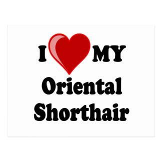 I Love (Heart) My Oriental Shorthair Cat Postcard