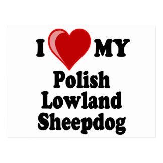 I Love (Heart) My Polish Lowland Sheepdog Postcard