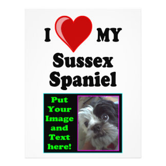 I Love (Heart) My Sussex Spaniel Dog Flyer