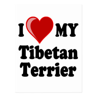 I Love (Heart) My Tibetan Terrier Dog Postcards