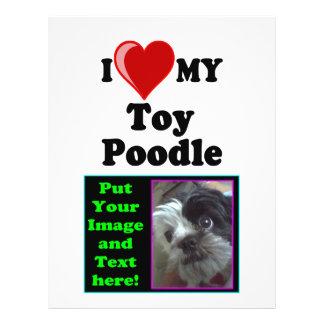 I Love (Heart) My Toy Poodle Dog Flyer