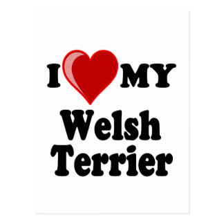 I Love (Heart) My Welsh Terrier Dog Post Cards