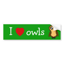 I Love/Heart Owls Cute Scruffy Owl Bumper Sticker