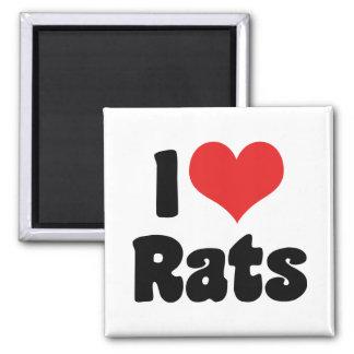 I Love Heart Rats - Pet Rat Lover Magnet
