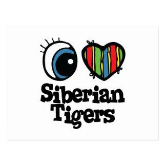 I Love (Heart) Siberian Tigers Postcard