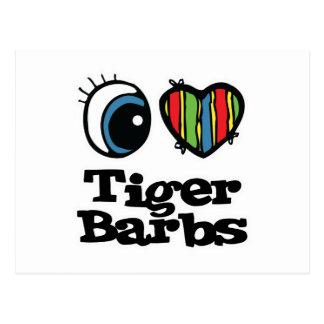 I Love (Heart) Tiger Barbs Postcards