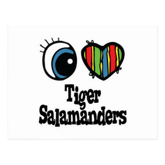 I Love (Heart) Tiger Salamanders Postcards