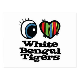 I Love (Heart) White Bengal Tigers Postcard