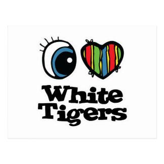 I Love (Heart) White Tigers Postcard