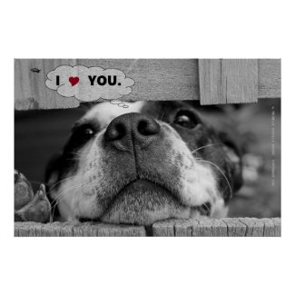 """""""I Love/Heart You."""", Dog's Snout"""