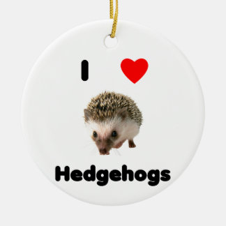 I love hedgehogs christmas tree ornament