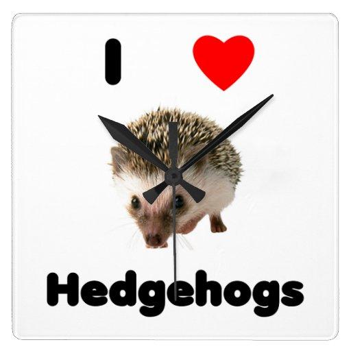 I love hedgehogs square wall clock