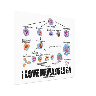 I Love Hematology (Blood Cell Lineage) Canvas Print