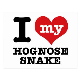 I Love Hognose snake Postcard