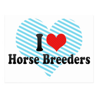 I Love Horse Breeders Post Cards
