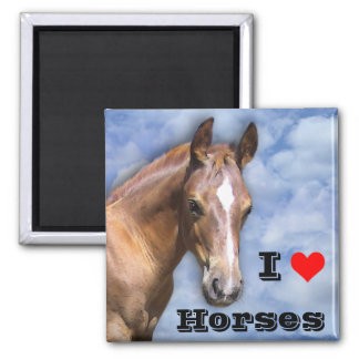 I love Horses 2 Inch Square Magnet