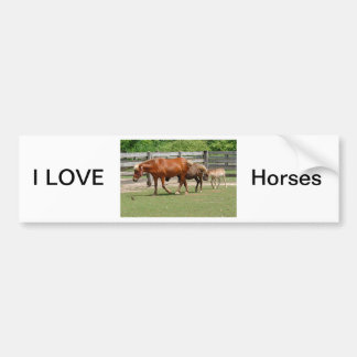 I Love Horses Bumper Sticker