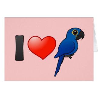 I Love Hyacinth Macaws Card
