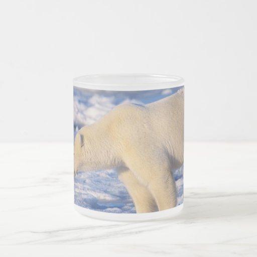I LOVE ICE! FROSTED GLASS COFFEE MUG