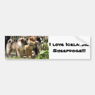 I love Icelandic Sheepdogs Car Bumper Sticker
