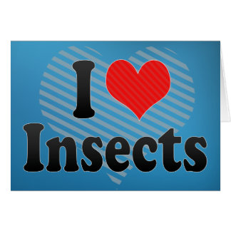 I Love Insects Cards