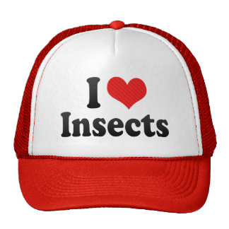 I Love Insects Hat