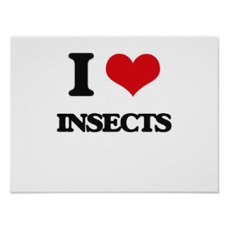 I Love Insects Poster