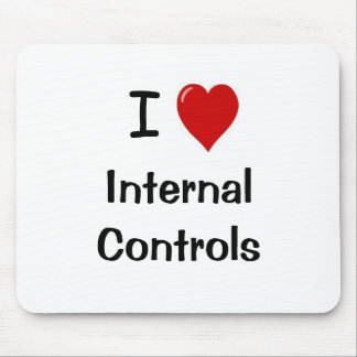 I Love Internal Controls - Funny Compliance Quote Mousemats